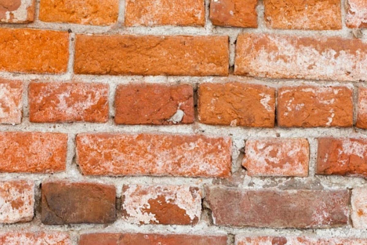 Tâches blanchâtres sur un mur de brique